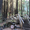 The trailhead for accessing Limekiln State Park's three hiking trails is located at the back of the campground.- Limekiln State Park Campground