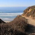 The beach access trail.- Sand Dollar Beach