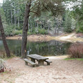 The day use area has picnic tables and a nice swimming beach.- Alder Dune Campground