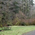 One of the many sites with little privacy at Cape Perpetua Campground.- Cape Perpetua Campground