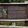 The site offers detailed background about the plant and habitat.- Darlingtonia State Natural Site