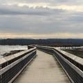 Estuary boardwalk.- Billy Frank Jr. Nisqually National Wildlife Refuge