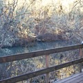 This viewing platform in the Water Garden is a great place to watch birds.- Mount Pisgah Arboretum Hike