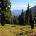 A pleasant meadow turns into a 3-mile, 2,000-foot descent.- Lake Aloha
