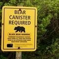 Bring a bear canister. They can be rented from the King Range National Conservation Area Project Office.- The Lost Coast Trail
