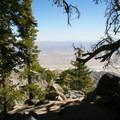 Welcome shade.- Cactus to Clouds Skyline Trail Hike