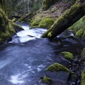 Swirling water following the hiking path just above Memaloose Falls.- Clackamas + Memaloose Falls