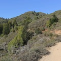 Old Railroad Grade Fire Road is used by both hikers and mountain bikers.- East Peak via Hogback + Fern Creek Trail