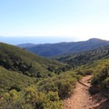Descending Fern Canyon Trail with the Muir Woods valley below.- East Peak via Hogback + Fern Creek Trail