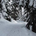 Winding trail to Skyline Lake.- Skyline Lake