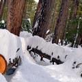 Lots of snow at Lake Wenatchee.- Lake Wenatchee State Park North Loop