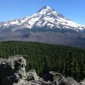 Mount Hood (11,249') from Owl Point summit (4,934').- Owl Point Hike