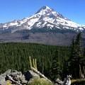 Mount Hood (11,249') showcasing the Dollar Lake wildfire burn zone.- Owl Point Hike