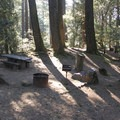 Pantoll Campground is tucked away under a Douglas fir forest on Mount Tamalpais' mid-elevation slopes.- Pantoll Campground