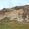 Fort Funston cliffs.- Fort Funston