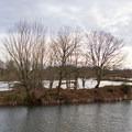 Delta Ponds.- Delta Ponds
