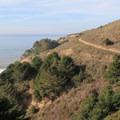 Looking north along the Coast Trail.- Palomarin Hike to Bass Lake