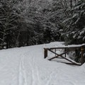 Gate at the parking area for Kelcema Lake.- Kelcema Lake