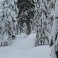 Following the Kelcema Lake Trail.- Kelcema Lake