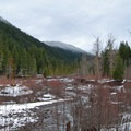 The view along the Sandy River.- Sandy River Trail
