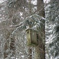 A birdhouse provided by the Audubon Society.- Gold Creek Pond Loop