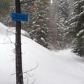 Intersection of Tronsen Loop and Sidestep Trails.- Tronsen Meadow-East Loop