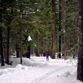 Cross-country skiing in Lake Easton State Park.- Lake Easton State Park Cross-Country Skiing