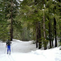 The trail eventually leads into a non-motorized area.- Lake Easton State Park Cross-Country Skiing