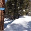 Signage at the Wenatchee Ridge Trailhead.- Wenatchee Ridge Trail