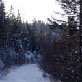 Continuing along the ridge.- Wenatchee Ridge Trail