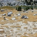 Numerous lakes on this section.- Tuolumne Meadows to Yosemite Valley via Vogelsang Camp
