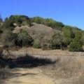 Deer Island Open Space Preserve.- Deer Island Open Space Preserve