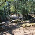 Bridges at Bootjack cross upper Redwood Creek.- Bootjack Campground