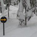 Follwing signs up through the Nordic base area.- Lanham Lake