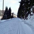 The trails at Hyak Sno-Park.- Hyak Sno-Park Trails
