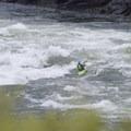 Wild Sheep.- Snake River