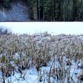 A frozen Memaloose Lake.- Memaloose Lake