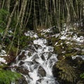 The first of many creeks on the Forest Service roads.- Talapus Lake Snowshoe