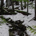 An unnamed creek on the switchbacks.- Talapus Lake Snowshoe