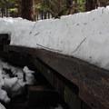 Snow-covered bridge.- Talapus Lake Snowshoe