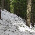 Following the trail above Talapus Creek.- Talapus Lake Snowshoe