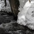 Crossing Talapus Creek near the headwaters.- Talapus Lake Snowshoe