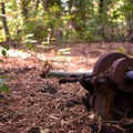 The first of the rustic car parts found along the trail.- Purisima Creek Trail