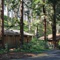 Concert facilities at Stern Grove.- Stern Grove + Pine Lake Park