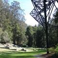 Concert meadow.- Stern Grove + Pine Lake Park