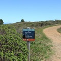 Mori Ridge Trail meets Sweeney Ridge Trail.- Mori Ridge Trail