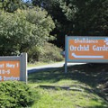Follow the orchid signs from Highway 1 for Mori Ridge parking.- Mori Ridge Trail