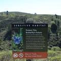 Mission blue butterfly habitat.- Notch Trail
