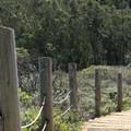 Notch Trail.- Notch Trail