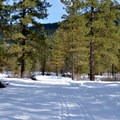 The Icicle River Trails lead through gorgeous open spaces.- Icicle River Trails